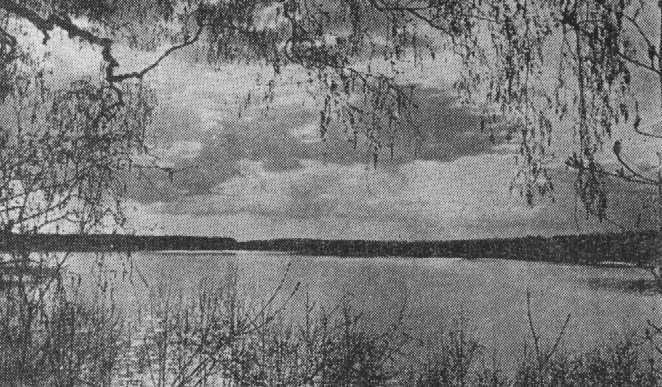 Hino järve foto Eesti Loodusest